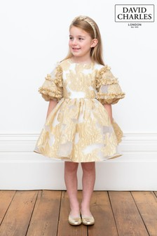 David Charles Gold Brocade Dress