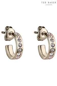 Ted Baker Gold Tone Seeni Mini Hoop Huggie Earrings