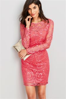 Embroidered Lace Bodycon Dress
