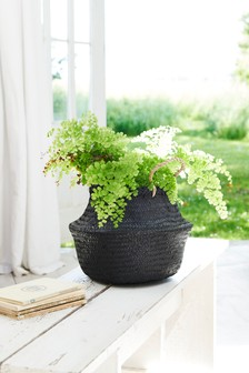 Small Woven Basket Planter