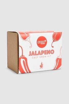 Grow Your Own Jalapeno Kit