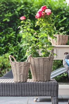 Set of 2 Polyrattan Basket Planters