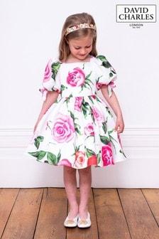 David Charles Ivory Dress