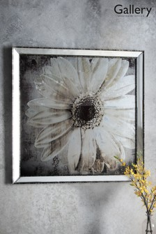Floral Studies II Framed Art by Gallery Direct
