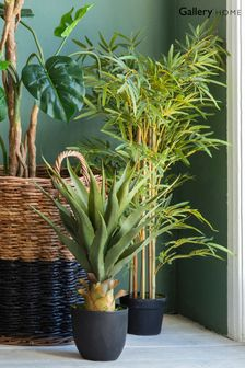 Faux Bamboo Grass Plant by Gallery Direct