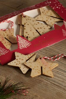 Set of 3 Festive Spice Wooden Air Fresheners