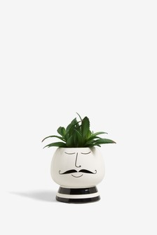 Artificial Plant in Ceramic Pot