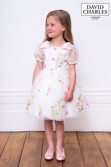 David Charles Embroidered Party Dress