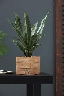 Artificial Sansivera Plant In Wooden Effect Pot