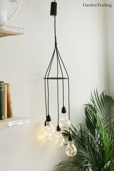 Festoon Cluster Lights by Garden Trading