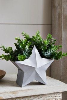 Artificial Plant in Star Pot
