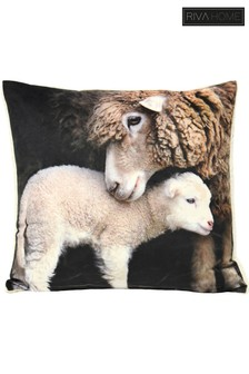 Faux Sherpa Lamb Cushion by Riva Home