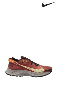 Nike Trail Brown Pegasus Trainers