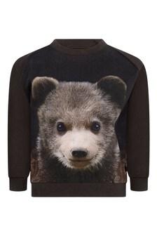Baby Boys Organic Cotton Bear Cub Sweater