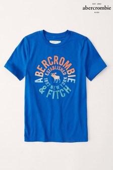 Abercrombie & Fitch Blue Rainbow Logo T-Shirt