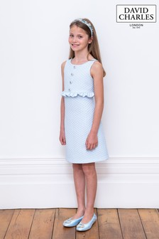 David Charles Blue Brocade Dress