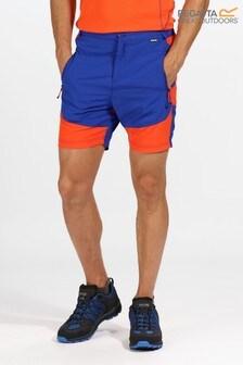 Regatta Blue Sungari Water Repellent Shorts