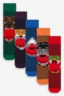 Animal Face Socks Five Pack