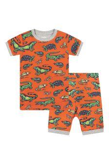 Hatley Kids & Baby Boys Red Aquatic Reptiles Organic Cotton Short Pyjama Set