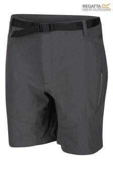 Regatta Grey Highton Mid Water Repellent Shorts