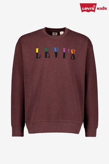 Levi's® Relaxed Graphic Crew Neck Sweater