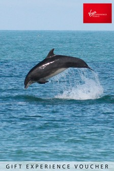 Dolphin Watching For Two Gift Experience by Virgin Experience Days