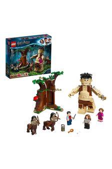 LEGO 75967 Harry Potter Forbidden Forest Umbridge's Act Set