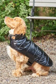 Padded Dog Coat
