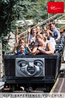 Family Visit To Drayton Manor Theme Park Gift by Virgin Experience Days