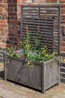 Large Alderley Plant Ladder By Rowlinson