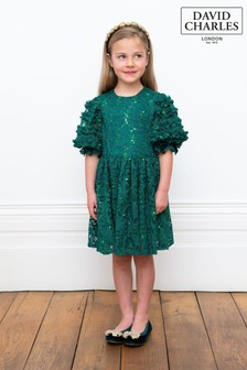 David Charles Green Lace Dress