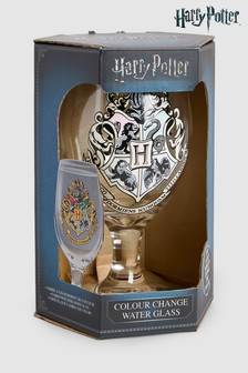 Harry Potter Cold Change Glass
