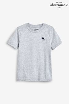 Abercrombie & Fitch Grey Basic Tee