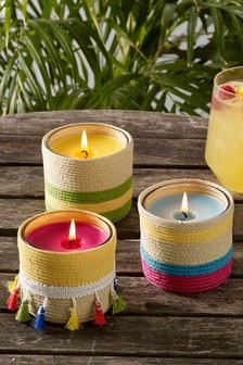 Set of 3 Guava and Lychee Citronella Candles