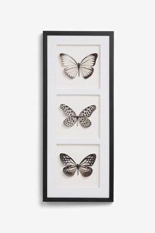 Montaje con marco con mariposa en 3D