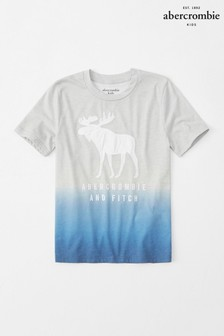 Abercrombie & Fitch Grey Dip Dye T-Shirt