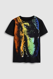 Graphic Dinosaur T Shirt 3 14yrs