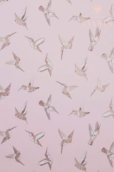 Oasis Hummingbird Blush Wallpaper