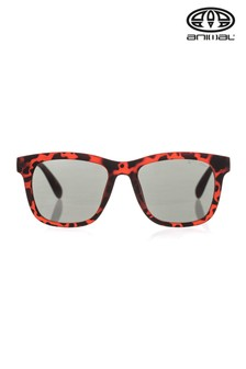 Animal Brown Illuminate Contrast Arm Sunglasses