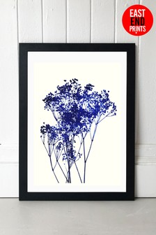 Baby's Breath by Garima Dhawan Framed Print