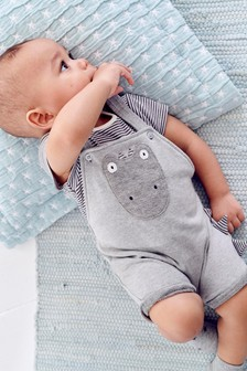 Soft Towelling Dinosaur Appliqué Dungarees And Bodysuit Set (0mths-2yrs)