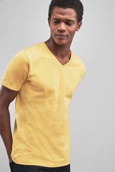 Regular Fit V-Neck T-Shirt
