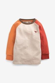 Cosy Long Sleeve Raglan T-Shirt (3mths-7yrs)