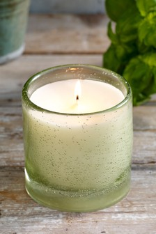 Basil and Tomato Leaf Bubble Glass Candle
