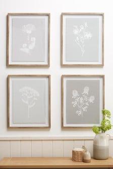 Set of 4 Linear Botanicals Framed Arts