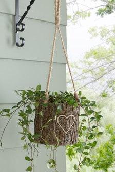 Hanging Bark Effect Planter