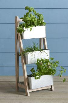 Salvage Ladder Small Planter