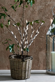 Set of 2 Solar Lit Twigs