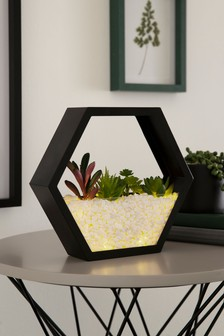 Terrarium Feature Light