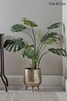 Cox & Cox Medium Faux Potted Monstera